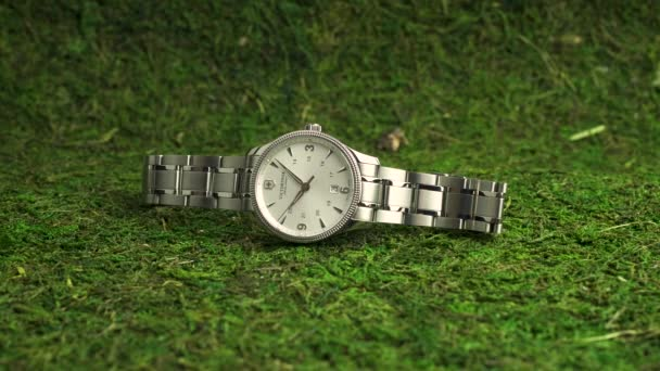 Ibach, Switzerland 7.04.2020 - Victorinox Man watch stainless steel case white clock face dial stainless steel bracelet lying on green moss