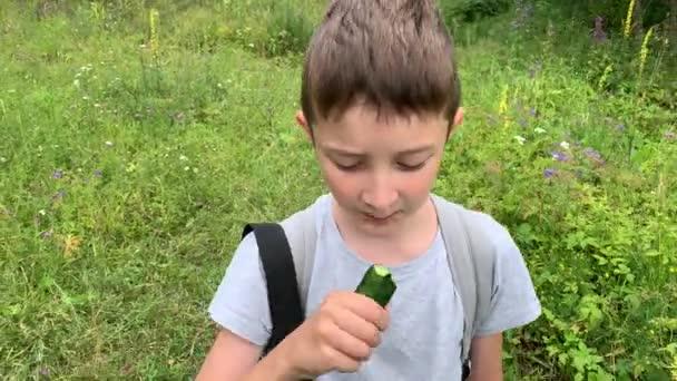 Egy portré egy éhes kisfiúról, aki végigsétál a zöld mezőn, rét és egy finom nyers uborkát eszik útközben nyáron, gondtalan fiútúrázás.