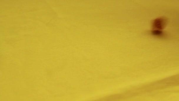 Gelb aus Holz chips Würfel. Würfeln