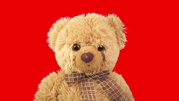 Teddy macik piros háttérrel. Mozgásban a gyerekjáték. Kedvenc játéka. Gyerekkorom óta. Táncoló maci. Grafikák éjszakai klubhoz, koncerthez, előadáshoz.