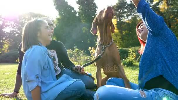 Šťastná rodina hrát s jejich psem v parku