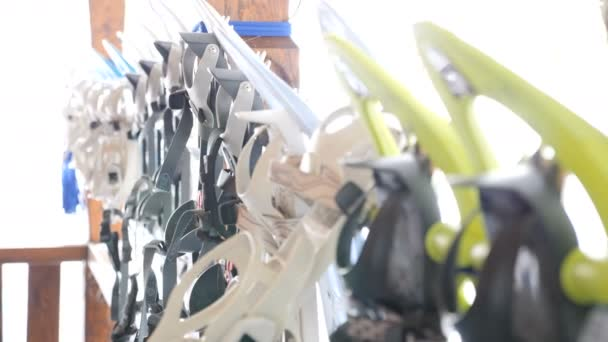 Different type and colors of snowshoeing
