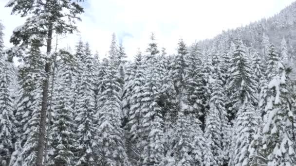 Krásná krajina v zimě