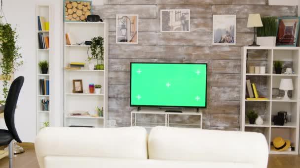 Pohled zezadu na muže sedícího na pohovce a sledujícího zelenou televizi