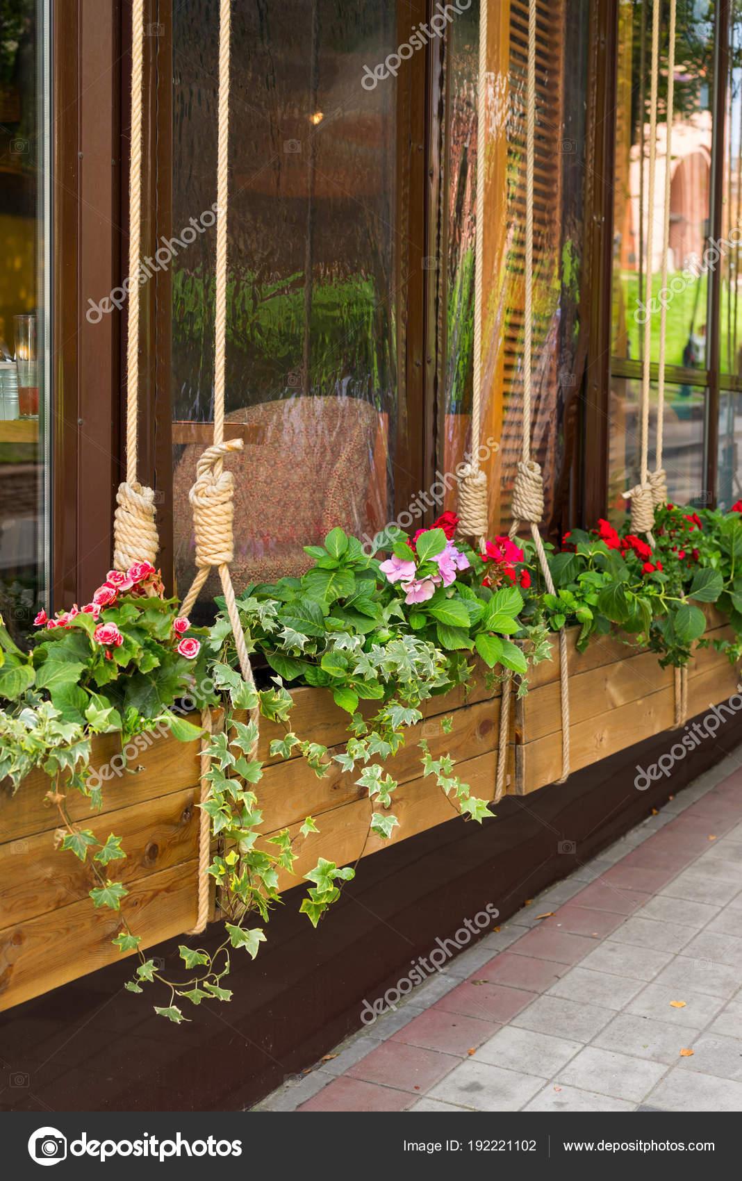 Горшок с цветами на улице
