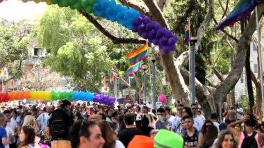 Gay pride pics and videos
