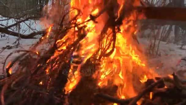 brennende elektrische Kupfer-Drähte in das Feuer Zeitlupen-video ...