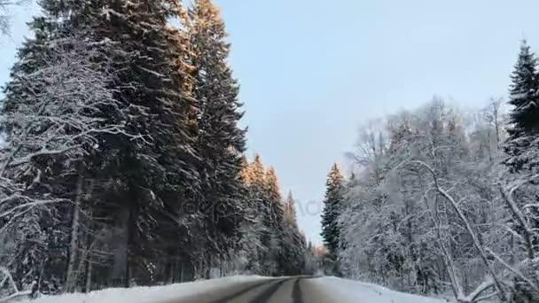 Čelní pohled z připojené kamery, když vozidlo jízdní zimní zasněžené lesní silnice.