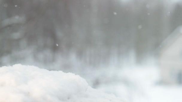 la neve cade lentamente. video al rallentatore