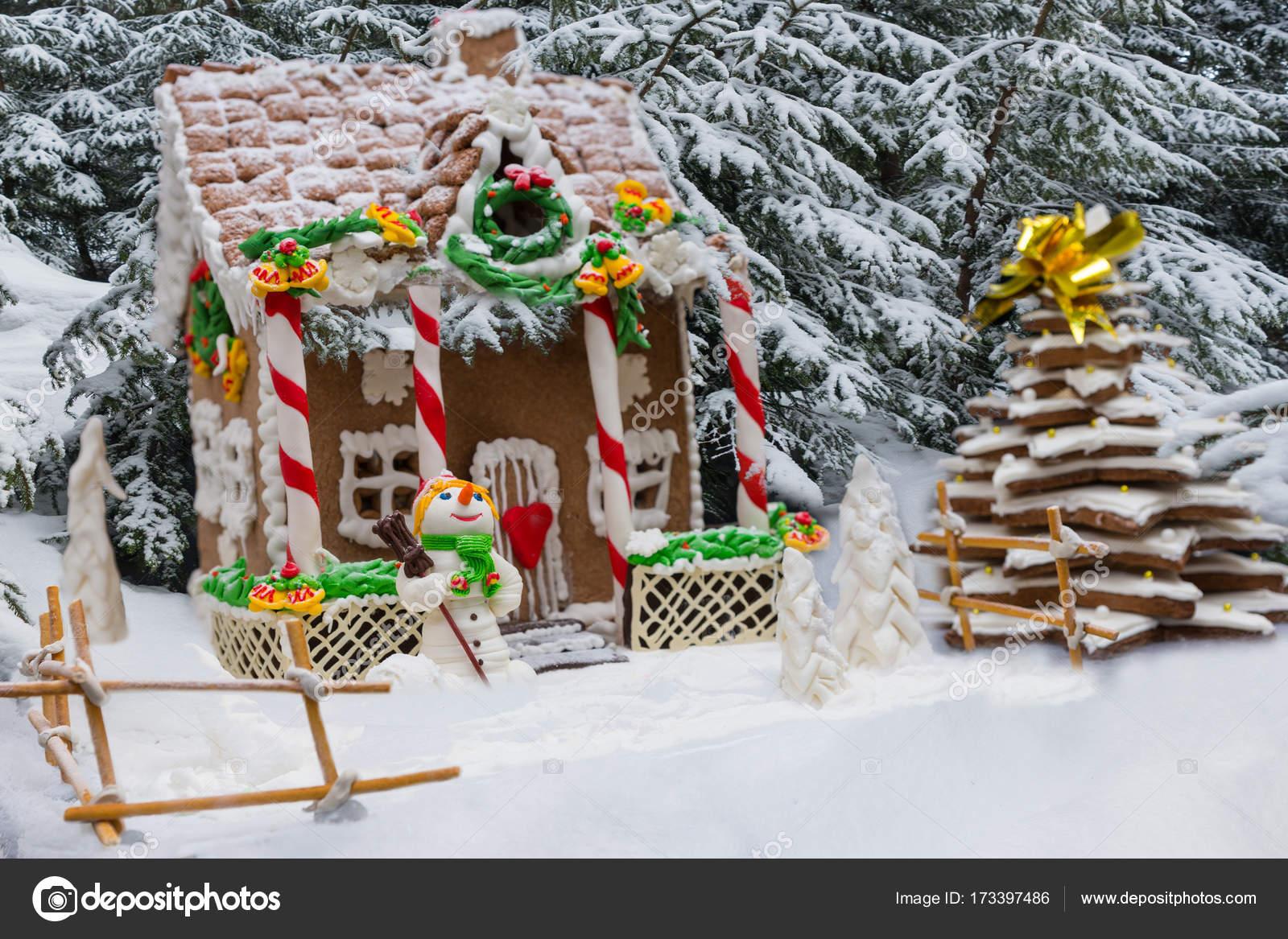 Sneeuw bedekte zelfgemaakte peperkoek huis peperkoek kerst t