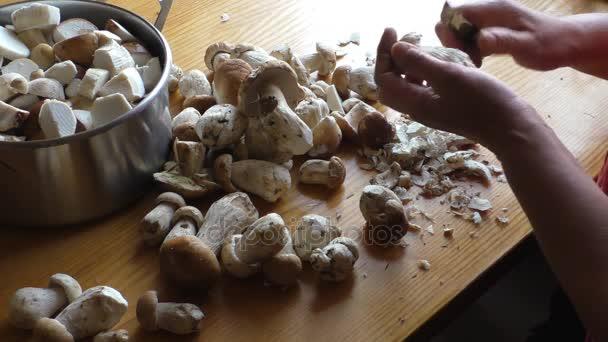 Loupání a řezání hříbky