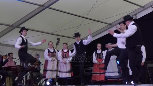 Hungarian dance group performing on stage