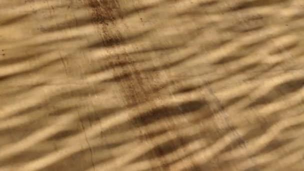 Fondo astratto di lerciume marrone di acqua onda modello luce solare riflettuto sulla parete verticale di cemento