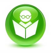 E-learning ikon üveges zöld kerek gomb