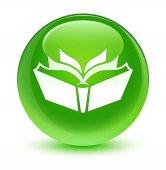 Fordítás ikonra üveges zöld kerek gomb