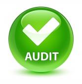 Audit (érvényesít ikon) üveges zöld kör gomb