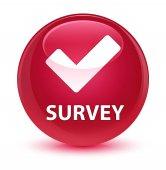 Survey (validate icon) glassy pink round button