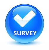 Survey (validate icon) glassy cyan blue round button