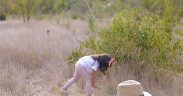 Gyerekek felfedezik a világot. Két négy és hét éves kislány tudósosat játszik, hálóval rovarokat fognak, és nagyítóban nézik őket. Vicces és érdekes gyerekkori történet 4k