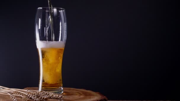 I pour cold light beer into a glass with foam