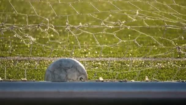 Míček spočívá v fotbalová branka, fotbalový šampionát
