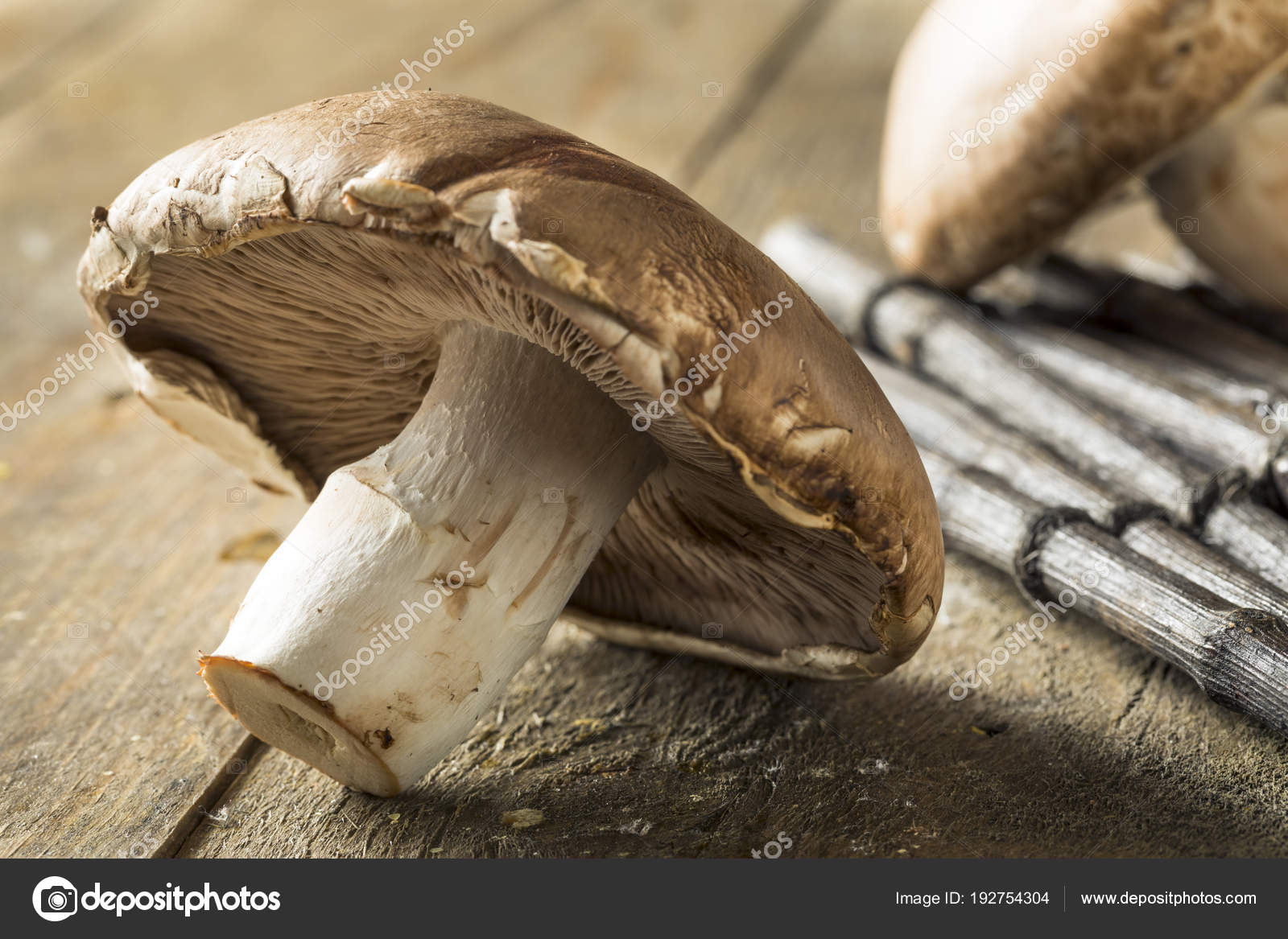 Raw Organic Portobello Mushrooms Stock Photo Image By C Bhofack2 192754304