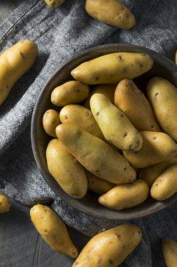 Raw Yellow Fingerling Potatoes