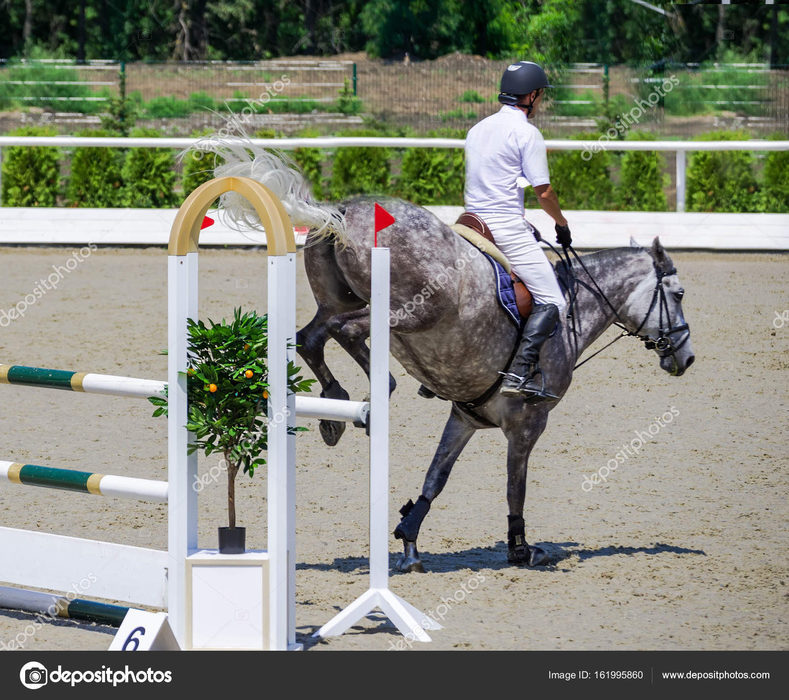 Rider On Gray Horse In Jumping Show Equestrian Sports Stock Photo C Martanovak 161995860