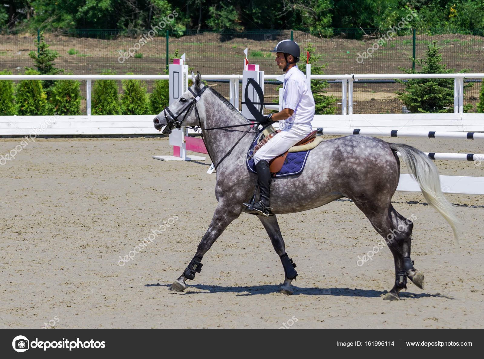 Rider On Gray Horse In Jumping Show Equestrian Sports Stock Photo C Martanovak 161996114