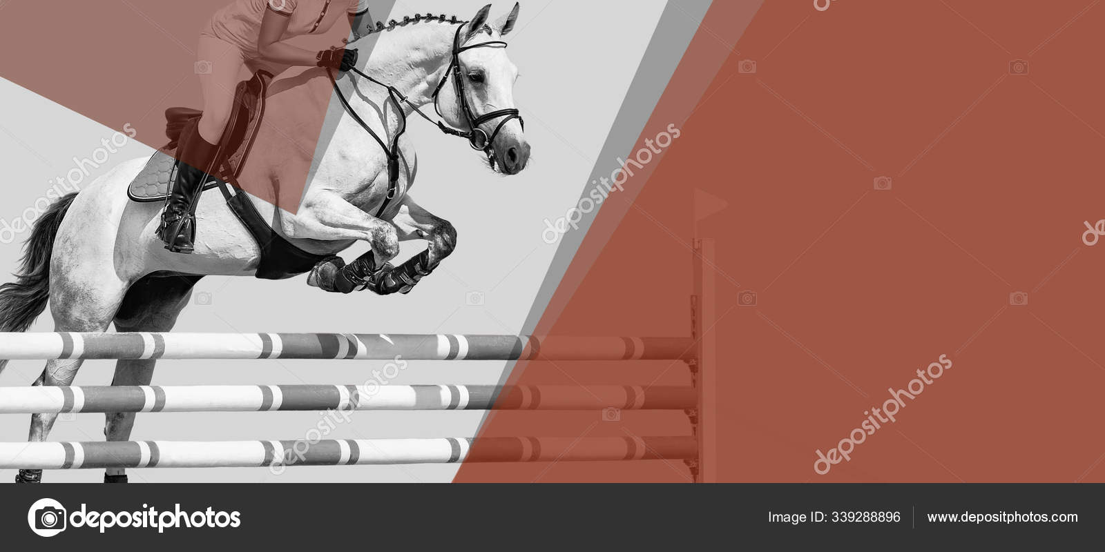 Horse Rider Black White Banner Header Billboard Duo Tone Beautiful Stock Photo C Martanovak 339288896
