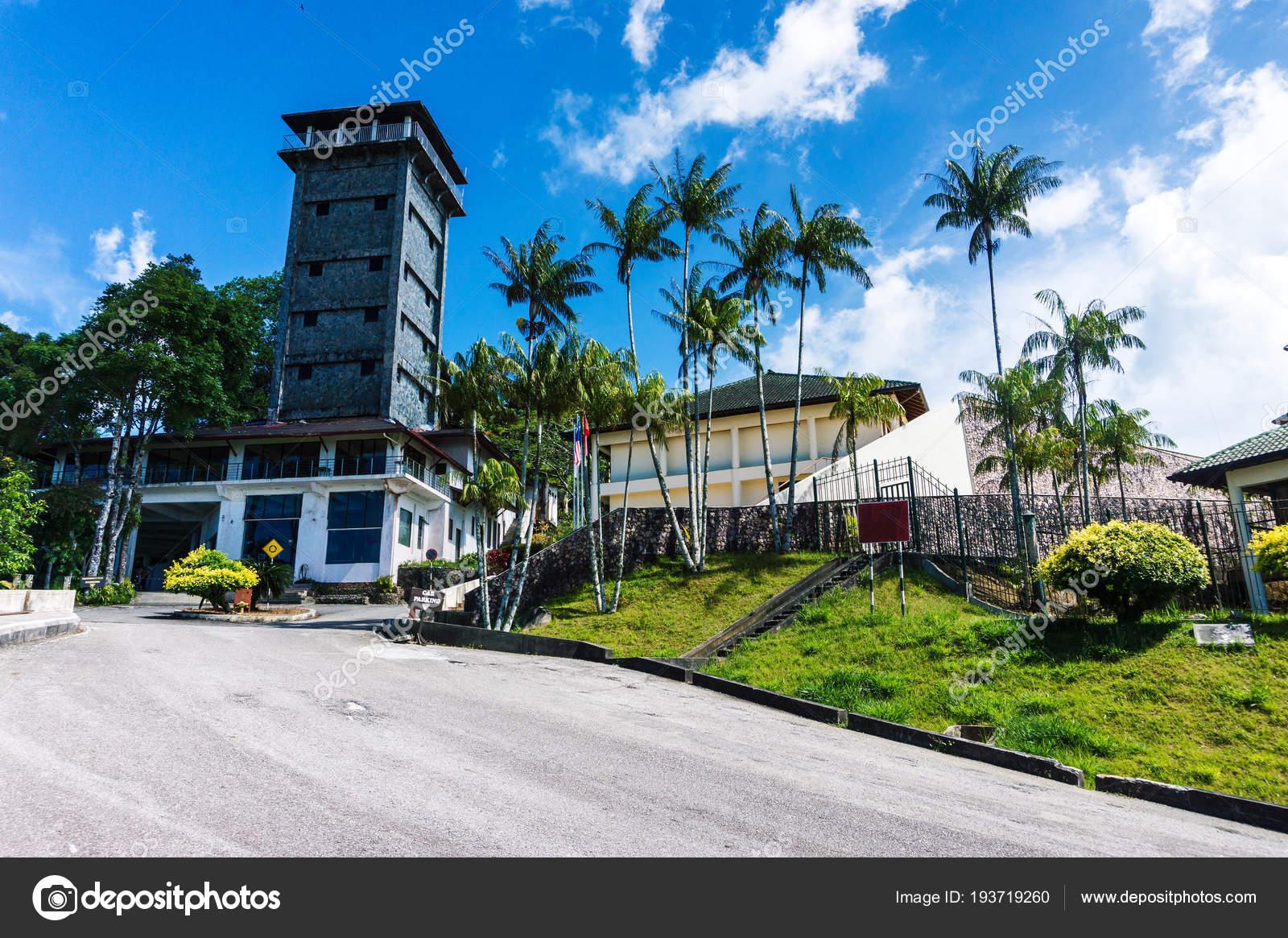 Reve De Toit maison de rêve avec toit de tuiles, encadré par des palmiers et ciel