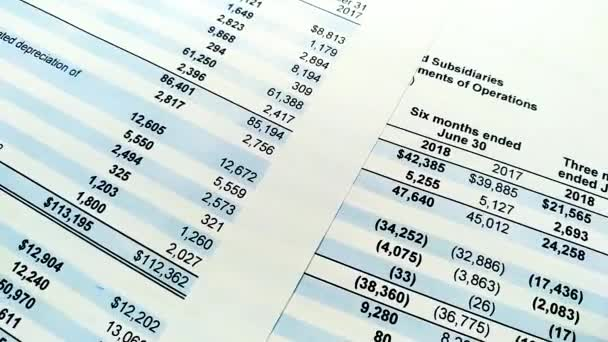 Finance statement report of company. revenue and profit statistics