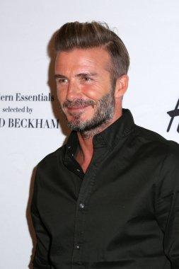 football player David Beckham