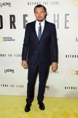 actor Leonardo DiCaprio
