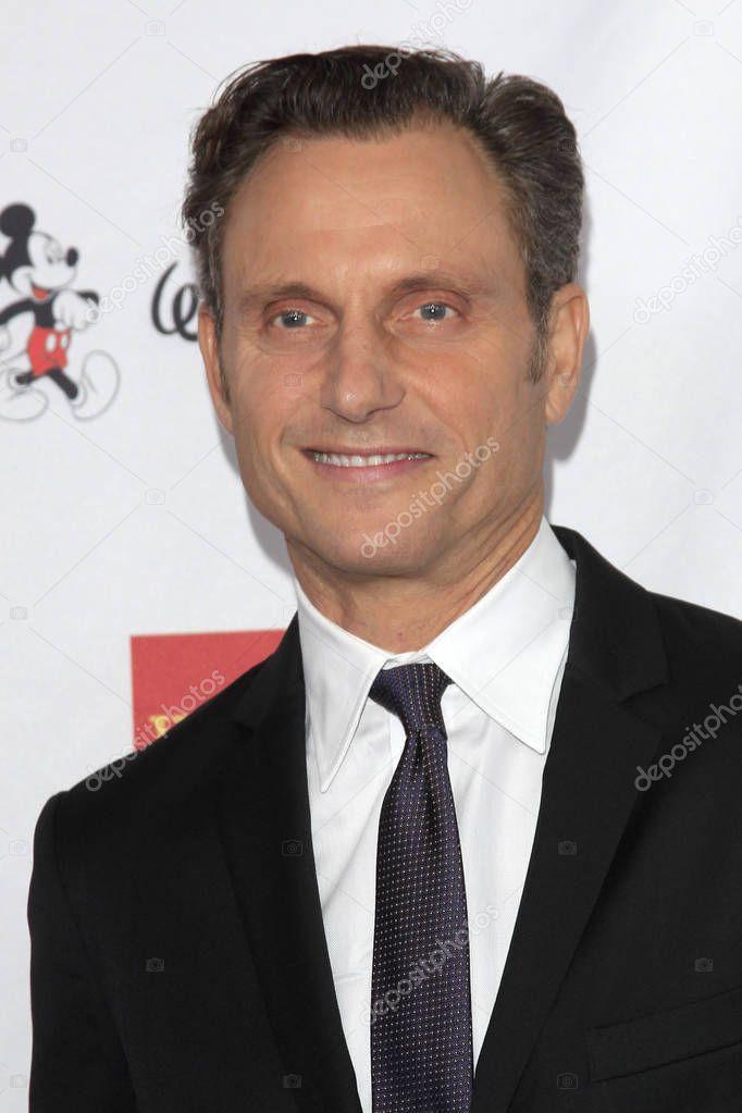 actor  Tony Goldwyn
