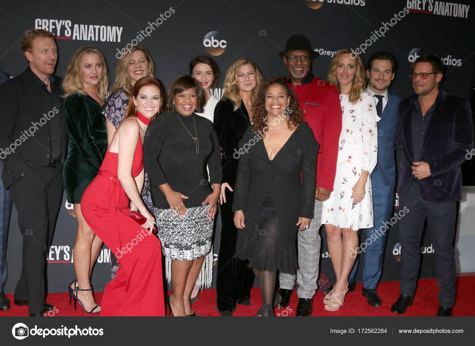 Greys Anatomy Cast Grey Anatomy 300th Episode Event Tao Los Stock