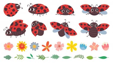 Cartoon ladybug. Cute ladybugs with flowers and leaves, red bug and insects vector illustration set. Funny lady bugs, flower buds and foliage pack. Childish flying beetle stickers collection