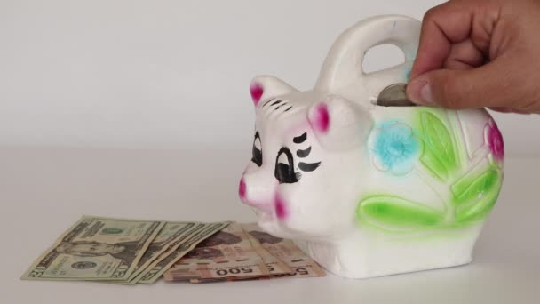 Úspora amerických dolarů na mexické Čuňasové bance vedle mexické a americké měny