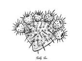 Kézzel rajzolt a friss, érett Kaktuszfüge