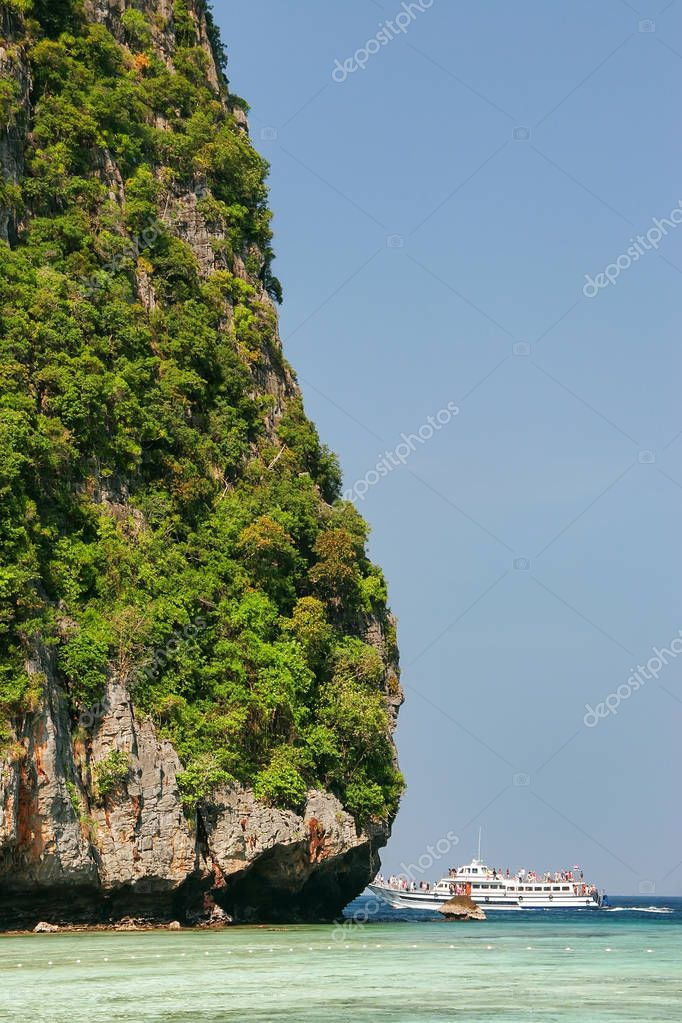 Detail of limestone cliff surrounding Maya Bay on Phi Phi Leh Is
