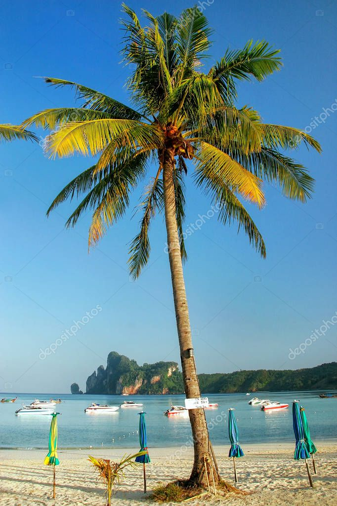 Ao Loh Dalum beach with sun umbrellas on Phi Phi Don Island, Kra