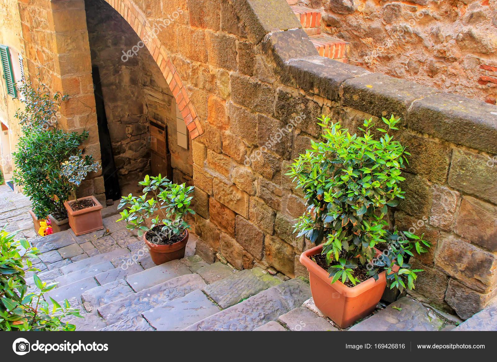 Portavasi A Scaletta In Legno : Portavasi rack di fiori pieghe di scaletta in legno massiccio
