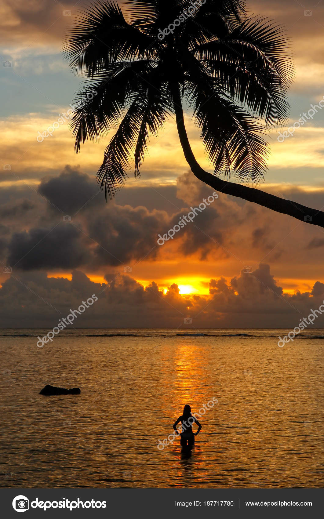 silhouette of leaning palm tree and a woman at sunrise on taveun