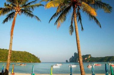 Ao Loh Dalum Beach on Phi Phi Don Island, Krabi Province, Thaila