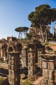 Photo historical Roman Forum ruins and trees in Rome, Italy