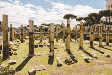 ancient roman forum ruins on sunny day, Rome, Italy