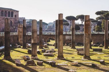 beautiful roman forum ruins, Rome, Italy