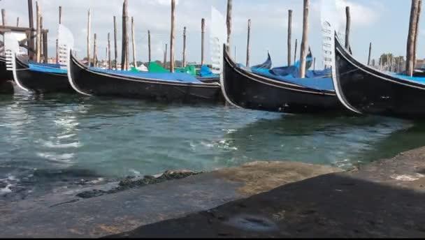 Venezia, Italia. gondole ancorate in san marco quadrato d