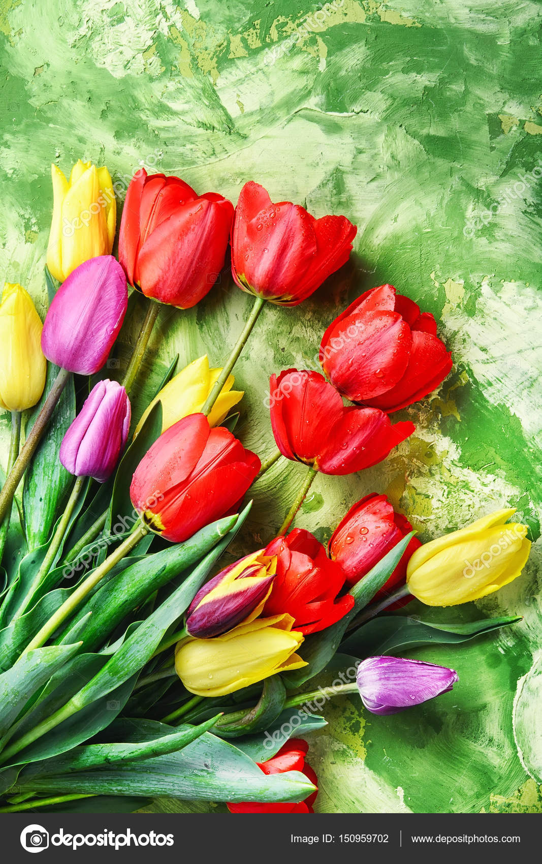 Bunch of spring beautiful tulip flower stock photo bouquet redyellow and purple tulips on green background photo by nikolaydonetsk izmirmasajfo