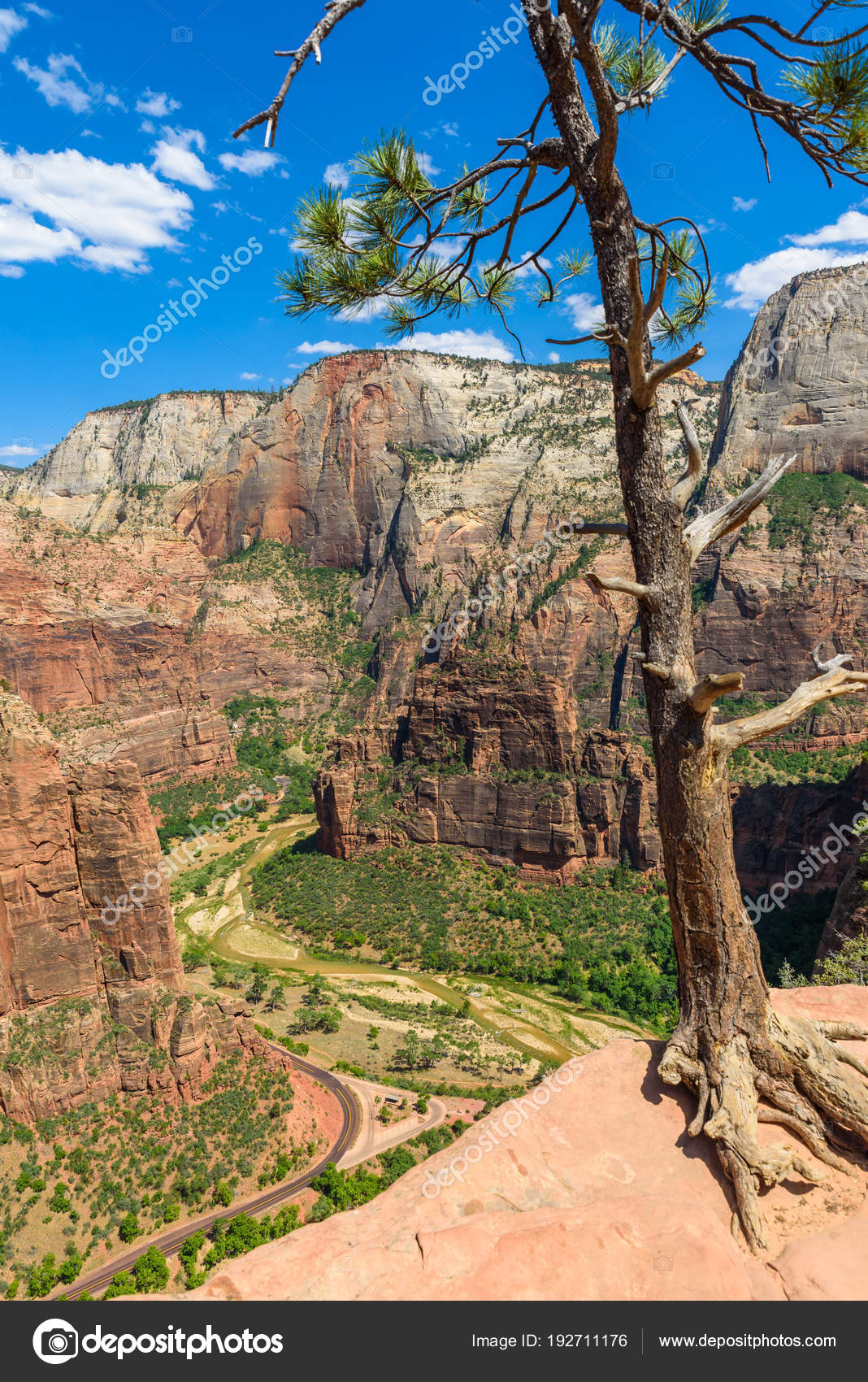 view zion canyon virgin river angels landing trail zion national